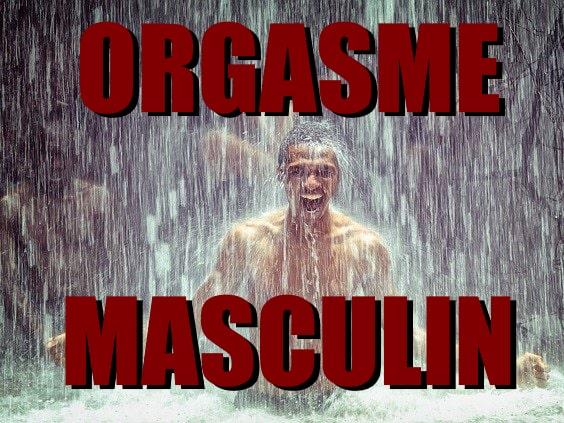 orgasme Masculin
